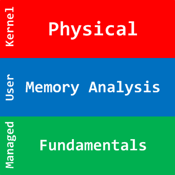 Physical Memory Analysis Logo
