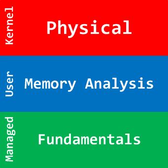 Physical Memory Analysis Logo